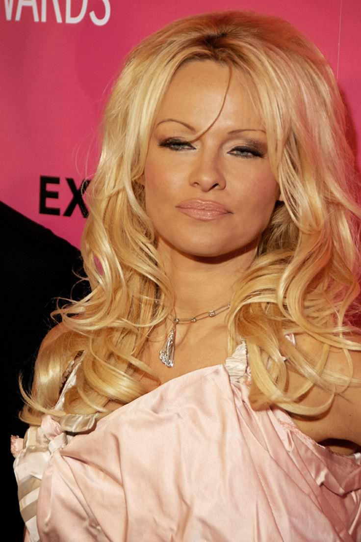 Discussion on this topic: Erin Torpey, pamela-anderson-born-july-1-1967-age/