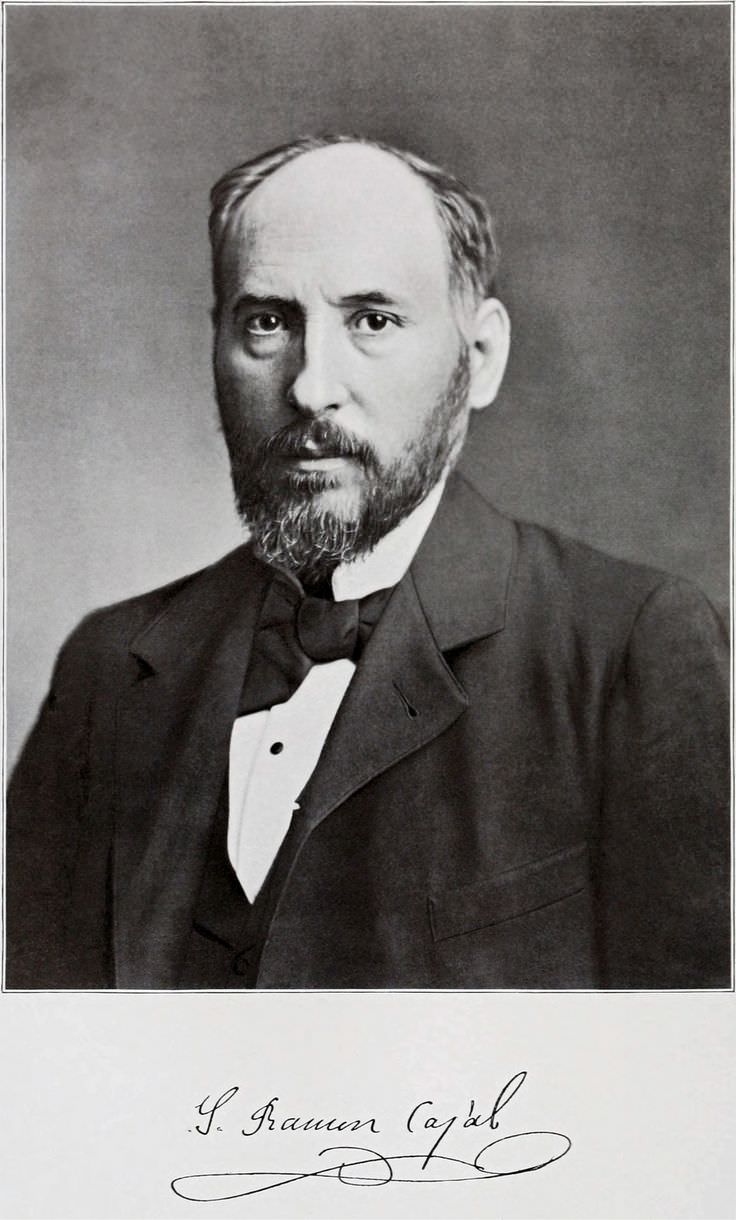 Famous Spanish Quotes Santiago Ramón Y Cajal  Celebrity Biography Zodiac Sign And