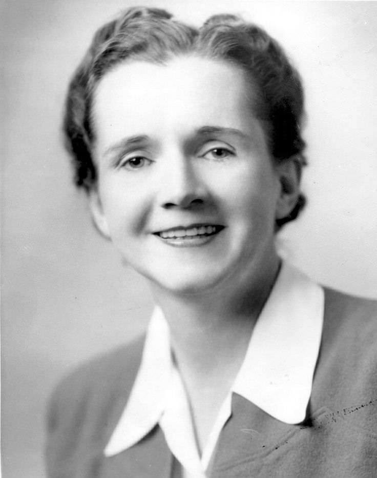rachel carson and the fight against The lies of rachel carson by dr j gordon edwards (full text, without tables and illustrations, from the summer 1992 21st century) a well-known entomologist documents some of the misstatements in carson's silent spring, the 1962 book that poisoned public opinion against ddt and other pesticides.